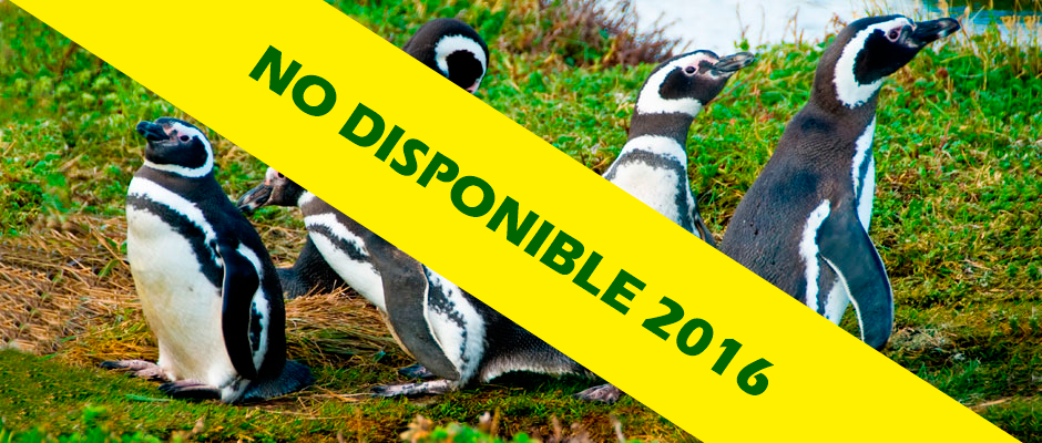 Pinguineras Seno Otway